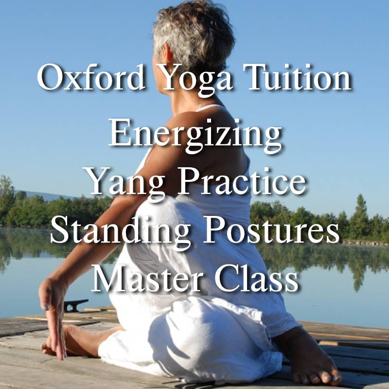 Energizing Yang Practice - Standing Postures - Master Class